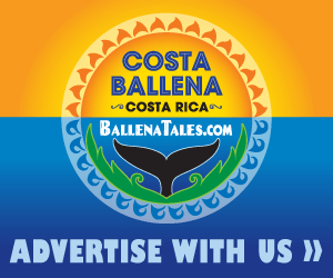 Advertise With Us, Ballena Tales Magazine