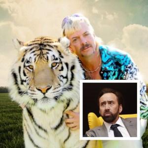 Nicholas Cage as Tiger King