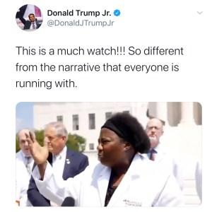 Donald trump jr tweet