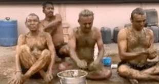 Indian doctors warn against cow poop as Covid cure