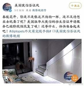 us embassy china social media post