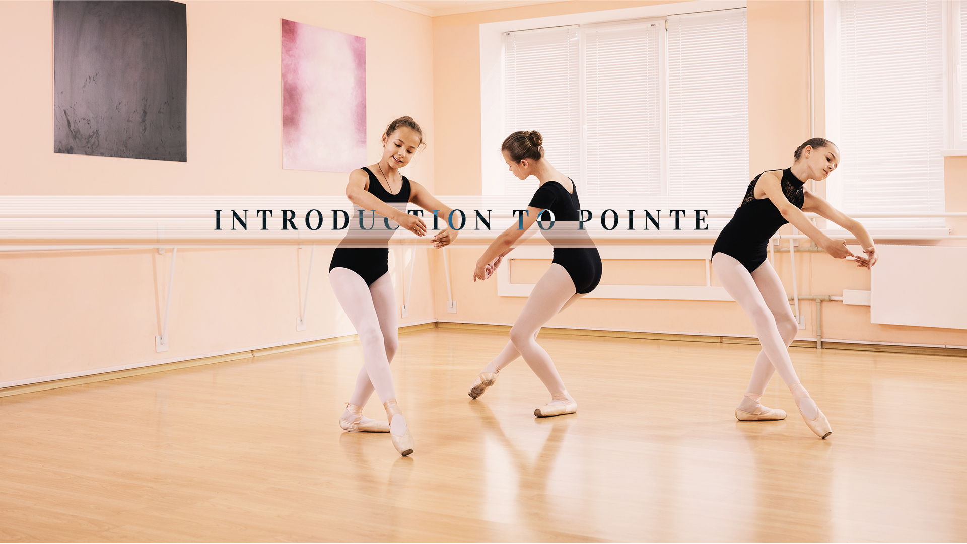 3cfa1cb385a49 Once a dancer has completed pre-pointe training, there is a transitional  class needed before full pointe training can begin. This is an introduction  (or ...