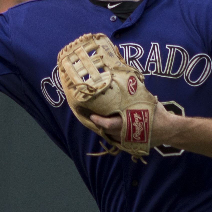 DJ Lemahieu's glove: Rawlings Pro Preferred PROSNP2-6C