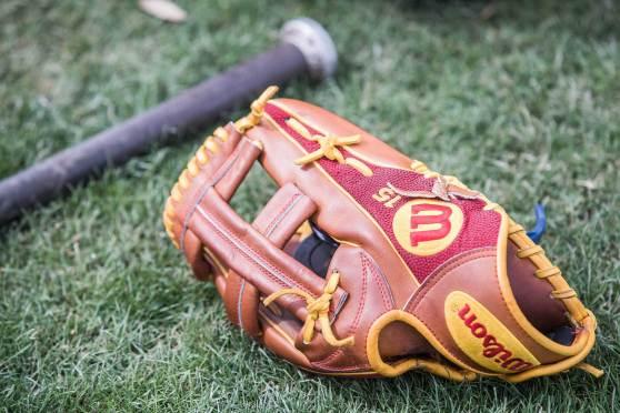 Dustin Pedroia's Glove for 2017: Wilson A2000 EL3/DP15