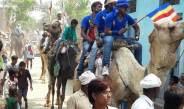 अंबेडकर जयंती पर काजीपुर गांव में घोड़े, ऊंट, हाथी संग निकला जुलूस