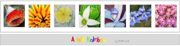 cropped-cropped-a-wa-rainbow-wp-header-jpeg1.jpg