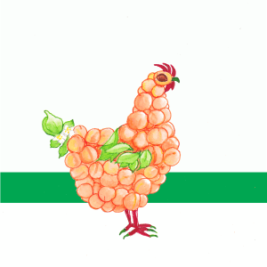 Apricot Chicken PS BG PNG