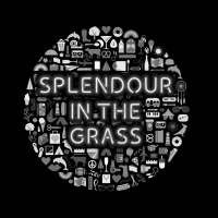 splendour-in-the-grass-transport