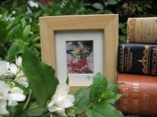 Floral mini daisy £7
