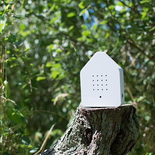Zwitscherbox Weiß B 110 x H 145 x T 35mm Plexiglas Dekobeispiel 3