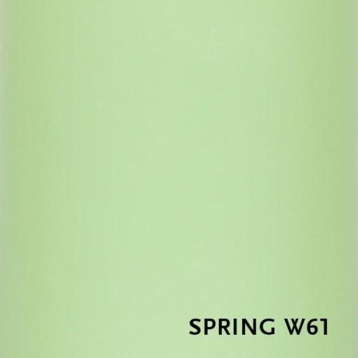 W61-spring