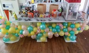 Organic balloon garland, by Balloonopolis, Columbia, SC