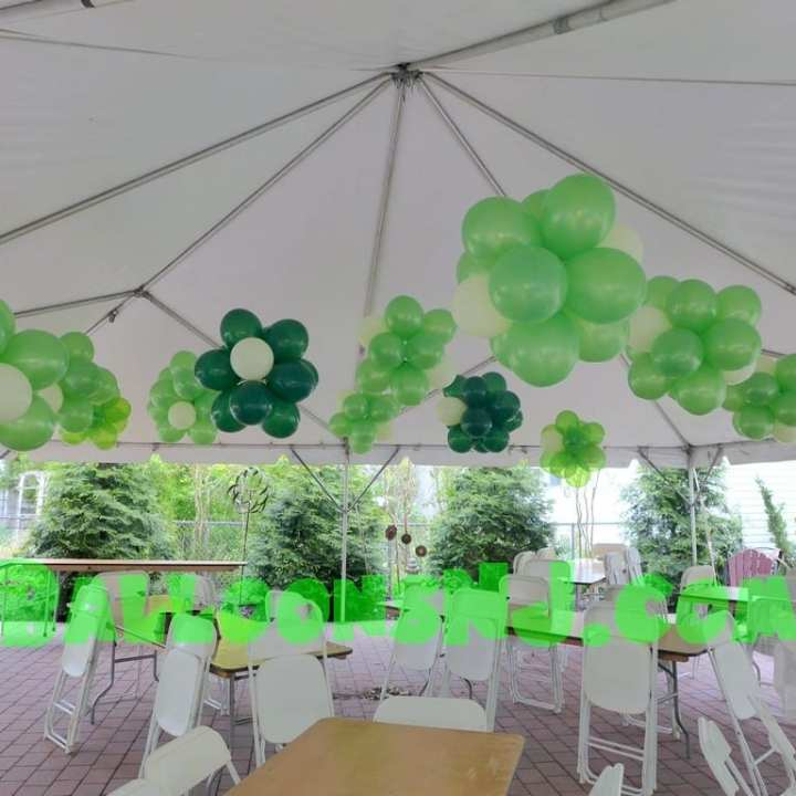 green_clusters_00002