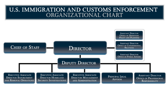 Ice org chartg also   immigration and customs enforcement ballotpedia rh