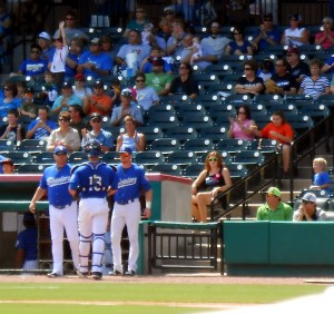 Fans Gathered to see the Sugar Land Skeeters play the York Revolution on the final day of summer Sunday. Photo R. Anderson
