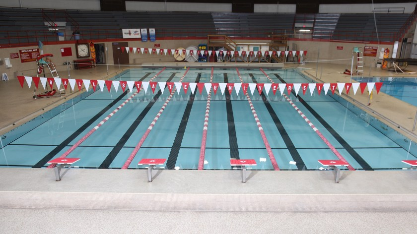 Image result for ball state pool