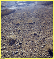 earth stone mud sand bush up and down light and shadows