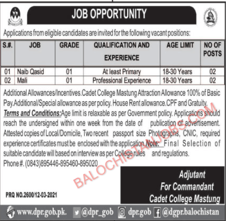 Jobs in Cadet College Mastung 2021