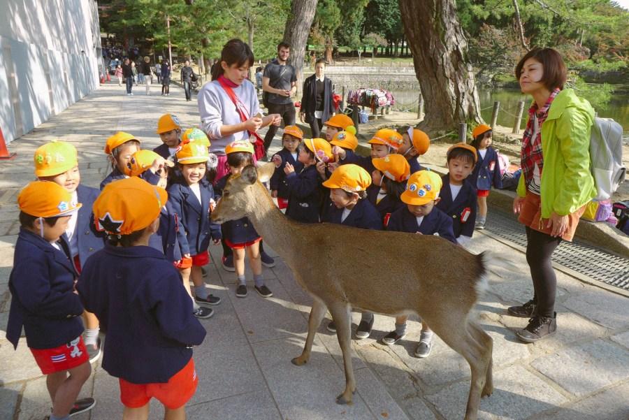 Trong khi đó, trẻ em Nhật Bản...:))