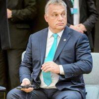 Nagy a baj Orbánnal  -  állítja a pszichológus, aki nemzetközileg elismert, magas szintű képviselője a szakmának