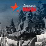 «Диктант Победы» состоится 3 сентября