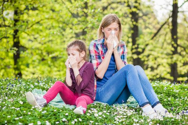 «Что такое перекрестная аллергия и чем она опасна?»