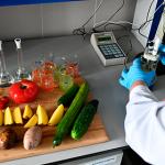 Россиянам рассказали о токсичности овощей и фруктов