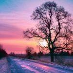Первые прогнозы: какая зима в этом году будет в Латвии?