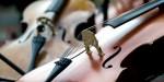 Семилетний россиянин стал призёром конкурса скрипачей имени Леонида Когана