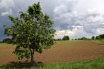 Прогноз погоды на понедельник в Латвии