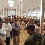Фермеры-старообрядцы, переселившиеся в Россию, получат отсрочку от армии