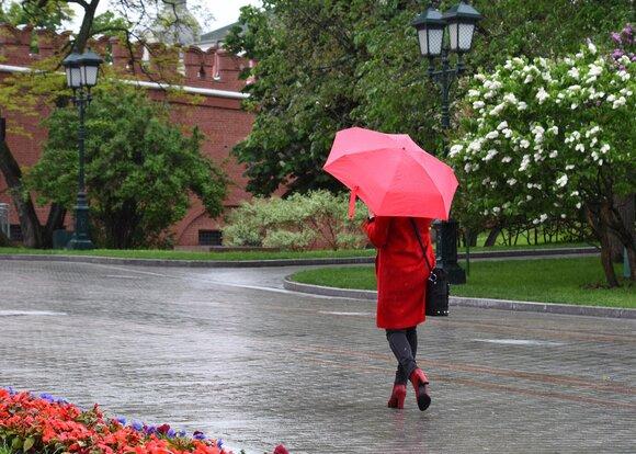Температура воздуха в Москве 2 июля превысит климатическую норму