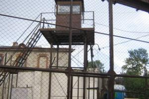 Андрей Заренков: от чего в эстонских тюрьмах гибнут подозреваемые?