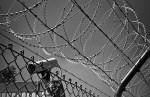 «Мать года» приговорена к четырем с половиной годам тюрьмы