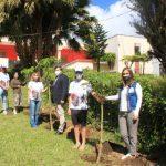«Сад памяти» высадили на острове Маврикий