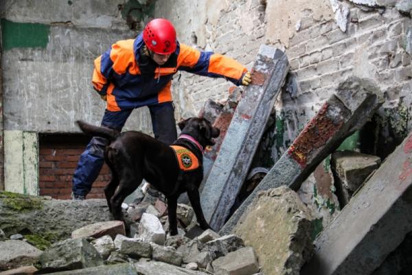 Спасатели МЧС России приступили к разбору завалов в Бейруте