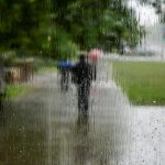 На половине территории Латвии наступила метеорологическая осень