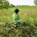 Синоптики: о погоде на новой неделе в Латвии