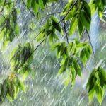 Синоптики предупреждают: в Латвии могут быть грозовые ливни
