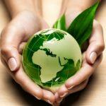 Соотечественники помогают Маврикию справиться с экологической катастрофой