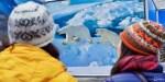 Соотечественники из других стран помогут популяризировать Русскую Арктику, заявил эксперт