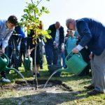 """Президент открыл первый в мире парк """"Деревьев счастья"""""""