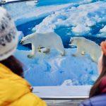 Соотечественники за рубежом помогут популяризировать Русскую Арктику, считает эксперт
