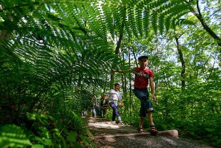 Участники программы «Дальневосточный гектар» создадут экологические тропы в Приморье