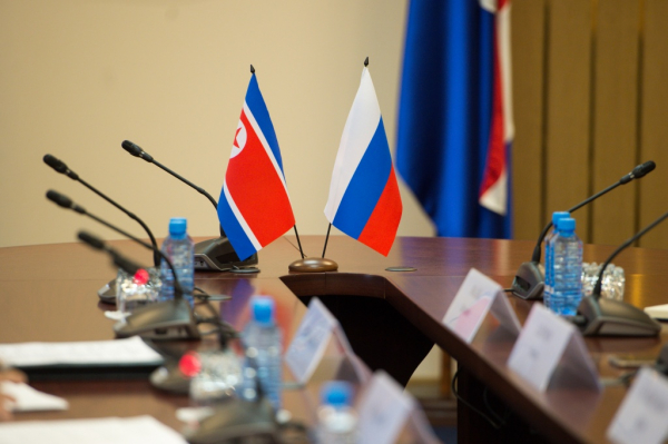 Россия помогает КНДР бороться с последствиями тайфунов