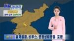 Коронавирус: Власти КНДР предупреждают жителей об опасной желтой пыли из Китая
