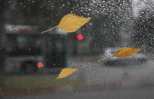 Прогноз погоды на среду: дожди по всей Эстонии