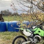 Служебный пес помог задержать прятавшегося в лесу нарушителя
