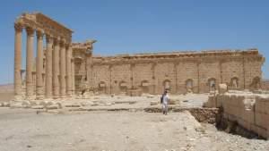 Эксперты из разных стран обсудят в Эрмитаже восстановление Пальмиры