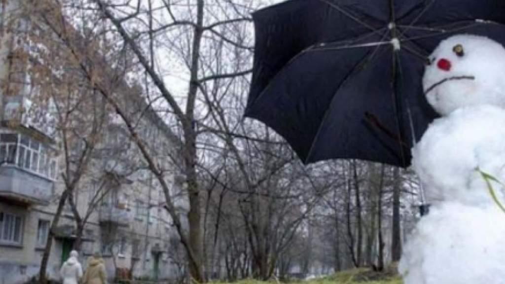 Метеорологи прогнозируют преимущественно серую зиму